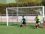 liga futbol-7, 2014-15