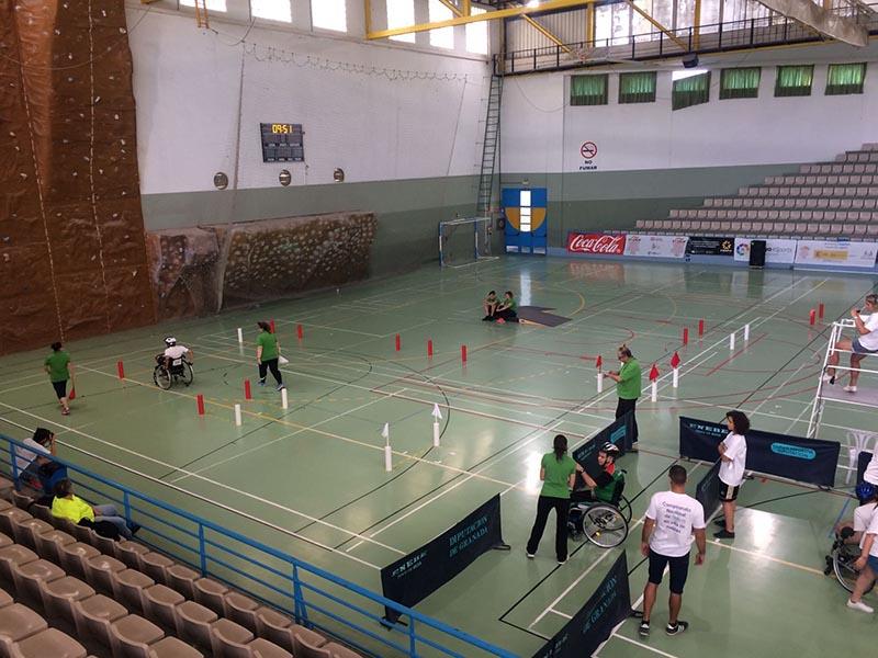 Campeonato Nacional de Slalom en Silla de Ruedas 2017 - FEDPC